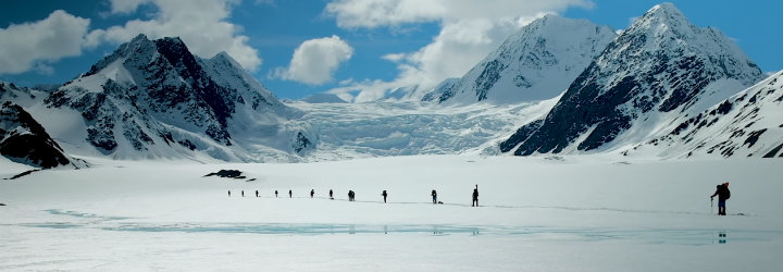 Image for Training to Survive Alaska