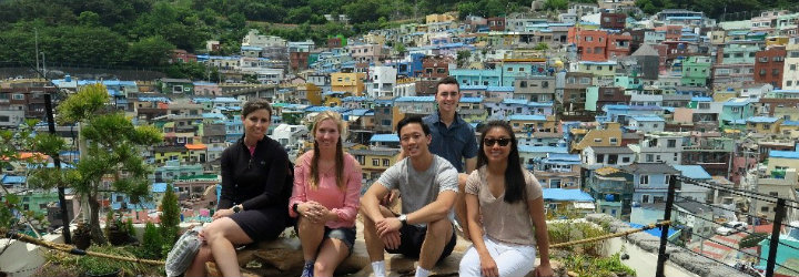 Image for South Korean Cultural Immersion and Exchange