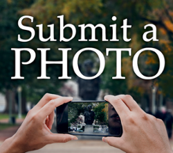 Submit a Photo